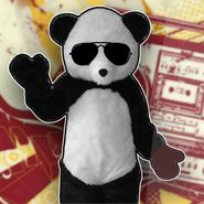 Panda jdy2017
