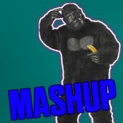 ItsOutForHarambe MASHUP