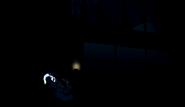 Fogos de Artifício00213