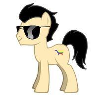NeoBay Pony