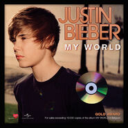 My World gold award Belgium