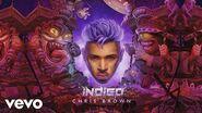 Chris Brown - Don't Check On Me (Audio) ft