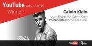 YouTube Ads of 2015 Winner