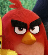 Red in The Angry Birds Movie