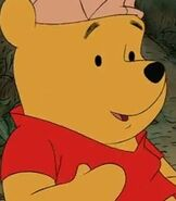 Winnie the Pooh in Winnie the Pooh