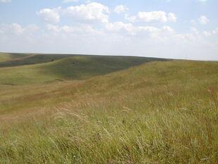 Dantari Prairie