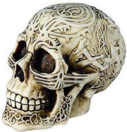 Celtic Skull decorative