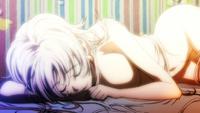 Neko asleep