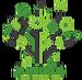 Jungle Insignia