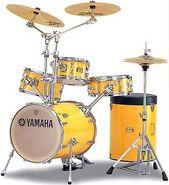 Ritsu Yamaha Rick Marotta Signature Hipgig