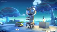 Mr. Cat's Story