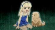 SK Anime 1