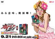 DVDPromo3