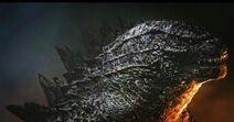 Godzilla vs Kong Godzilla what