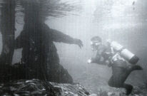 Godzilla Shoots Underwater