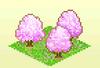 Pocket Harvest - Cherry Trees