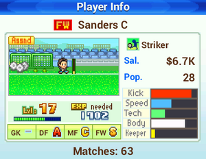 Player Info - Pocket League Story