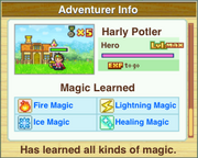 All Magic Learned (Dungeon Village)