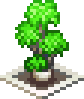 Leafy Plant - world cruise story.png