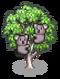 Koala Bros (Grand Prix Story 2)