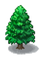Cedar (Grand Prix Story 2)