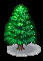 Cedar (Grand Prix Story 2).png