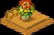 Flowers (High Sea Saga)