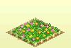 Pocket Harvest - Flower Field
