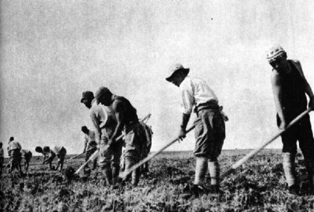 File:Korean Farmers.jpg