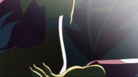 Rainbowbloodorb