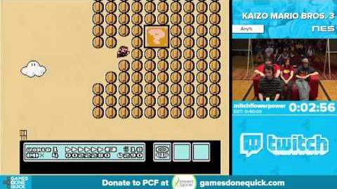 Kaizo Mario Bros. 3 by mitchflowerpower (AGDQ 2016)