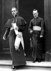Kardynał Palecci