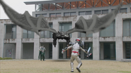 GiantBatRoidmude