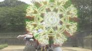 Bicker Finallusion shield ver
