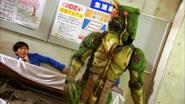 Fake Chameleon Zodiarts