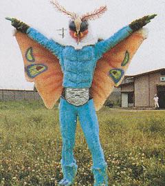 ドクガンダー(成虫)