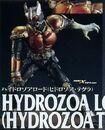 Hydrozoa Tegula