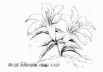 Yuriko's flowers