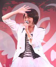 Akari Harp+y4
