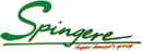 Team Spingere logo