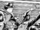 Shin Kamen Rider Spirits Chapter 4: Seven Kamen Riders