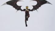 Night Rogue Wing