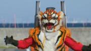 TigerRoidInKRTS