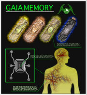 Museum GaiaMemory Emblem