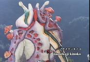 Namekuji Kinoko spelling