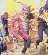 Kr-vi-mukadetiger