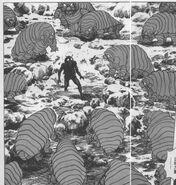 Illusion Mutants