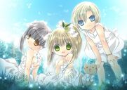 Himeka, karin, and kazune