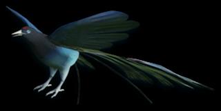 Boski ptak