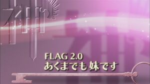 Flag 2.0